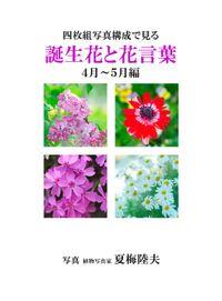 四枚組写真構成で見る誕生花と花言葉4~5月編
