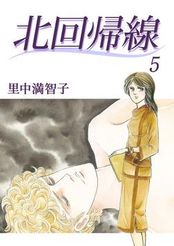 北回帰線 5巻-電子書籍