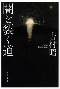 闇を裂く道-電子書籍