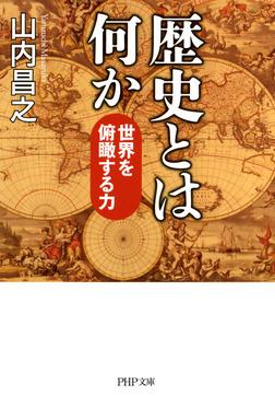 歴史とは何か 世界を俯瞰する力-電子書籍