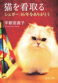 猫を看取る シュガー、16年をありがとう