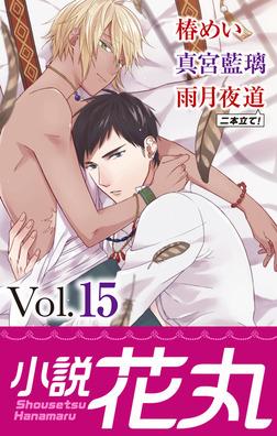 小説花丸 Vol.15-電子書籍