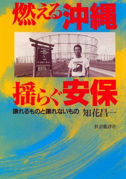 燃える沖縄 揺らぐ安保 : 譲れるものと譲れないもの-電子書籍