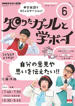 NHKテレビ 知りたガールと学ボーイ 2019年6月号-電子書籍