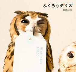 ふくろうデイズ-電子書籍