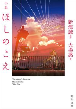 小説 ほしのこえ-電子書籍