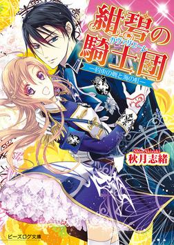 紺碧の騎士団3-約束の剣と海の虹--電子書籍