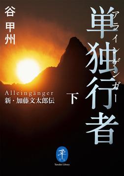 ヤマケイ文庫 単独行者 新・加藤文太郎伝下-電子書籍