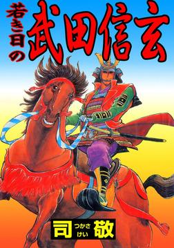 若き日の武田信玄-電子書籍