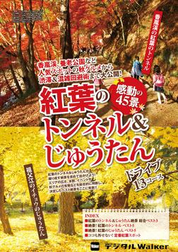 東海ウォーカー特別編集 紅葉のトンネル&じゅうたん感動の45景-電子書籍