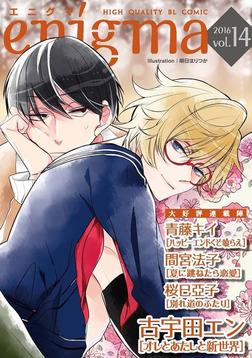 enigma vol.14 夏に跳ねたら恋愛、ほか-電子書籍