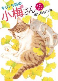 キジトラ猫の小梅さん / 15
