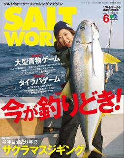 SALT WORLD 2019年6月号 Vol.136-電子書籍