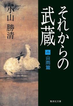 それからの武蔵(二)山雨篇-電子書籍