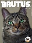 BRUTUS(ブルータス) 2021年 4月15日号 No.936 [猫になりたい]