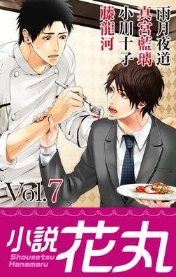 小説花丸 Vol.7-電子書籍