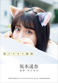 TEAM SHACHI アートブックコレクションVol.3 猫にチカラ饂飩 坂本遥奈