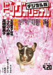ビッグコミックオリジナル 2018年8号(2018年4月5日発売)