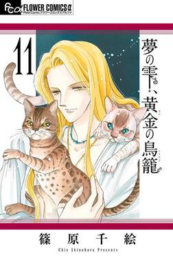 夢の雫、黄金の鳥籠(11)-電子書籍