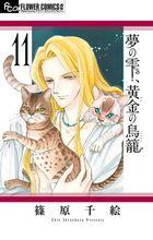 夢の雫、黄金の鳥籠(11)