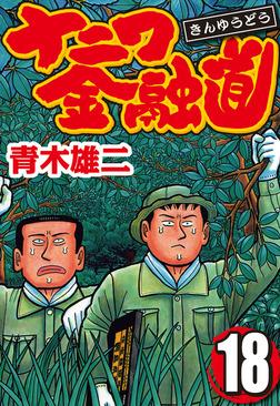 ナニワ金融道 18-電子書籍