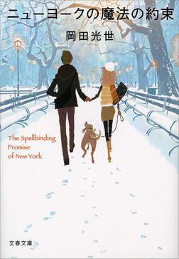 ニューヨークの魔法の約束-電子書籍