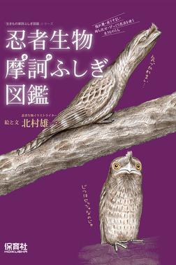 忍者生物摩訶ふしぎ図鑑-電子書籍