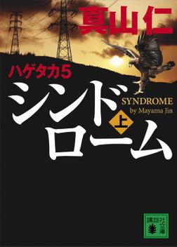 ハゲタカ 5 シンドローム(上)-電子書籍