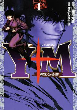 Y十M(ワイじゅうエム)~柳生忍法帖~(1)-電子書籍