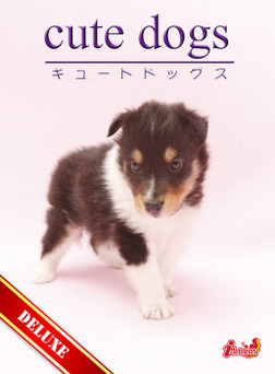 cute dogs DELUXE01 シェットランド・シープドッグ-電子書籍