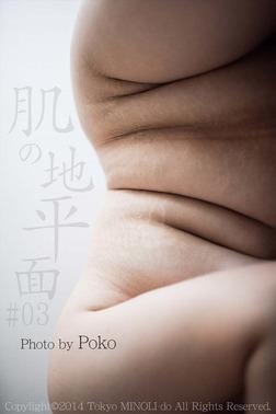 肌の地平面 #03【ぽっちゃり女性の写真集】-電子書籍