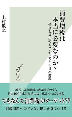 消費増税は本当に必要なのか?~借金と歳出のムダから考える日本財政~-電子書籍