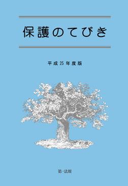 保護のてびき[平成25年度版]-電子書籍