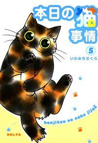 本日の猫事情 (5)