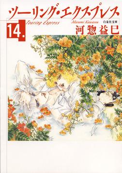 ツーリング・エクスプレス 14巻-電子書籍