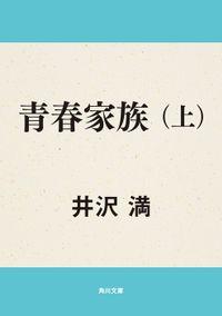青春家族(上)