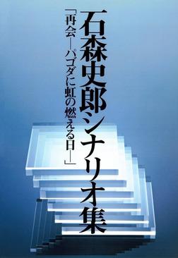 石森史郎シナリオ集「再会-パゴダに虹の燃える日」-電子書籍