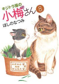 キジトラ猫の小梅さん(8)