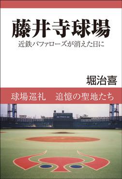 藤井寺球場 近鉄バファローズが消えた日に-電子書籍
