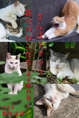 さんぽキャッツ 都会のねこたち 東京都内編(上)-電子書籍