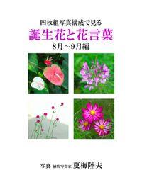 四枚組写真構成で見る誕生花と花言葉8~9月編