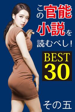 この官能小説を読むべし! BEST30 その五-電子書籍