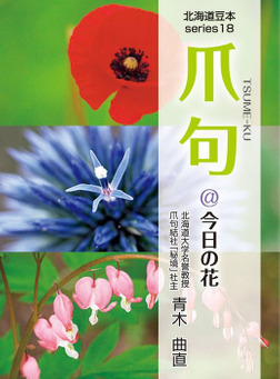 爪句@今日の花 : 都市秘境100選ブログ18-電子書籍