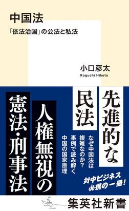 中国法 「依法治国」の公法と私法-電子書籍