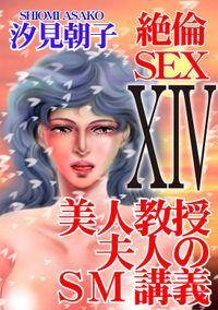 絶倫SEX 14 美人教授夫人のSM講義