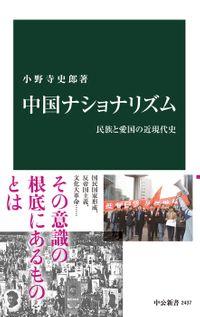 中国ナショナリズム 民族と愛国の近現代史(中公新書)
