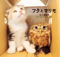 フクとマリモ-電子書籍
