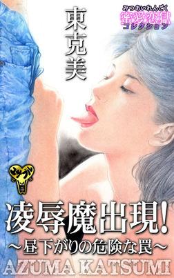 凌辱魔出現!〜昼下がりの危険な罠〜蜜愛恋獄-電子書籍