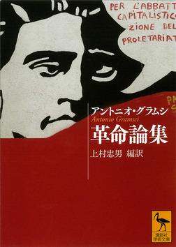 革命論集-電子書籍
