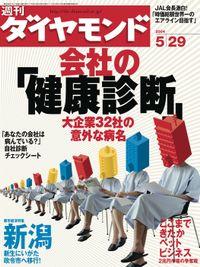 週刊ダイヤモンド 04年5月29日号